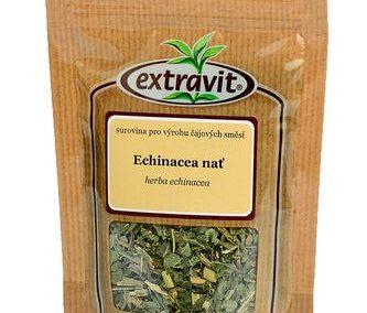 Echinacea - nať