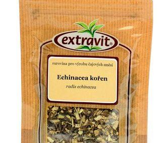 Echinacea - kořen